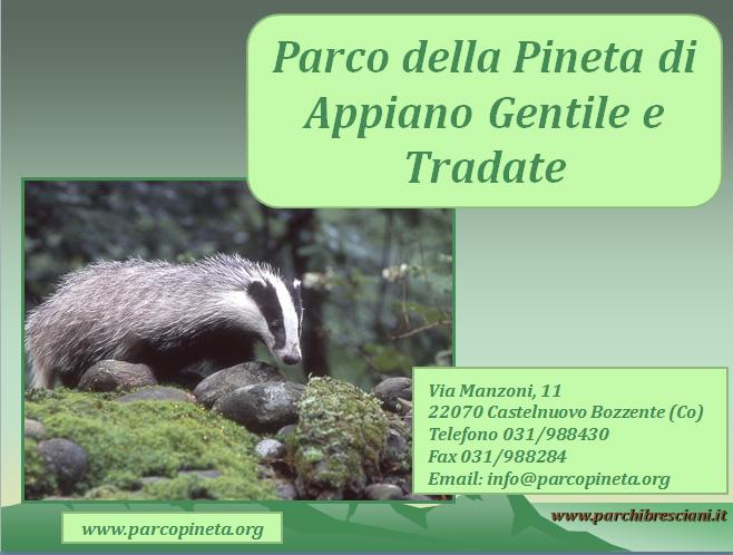 parco-pineta-appiano